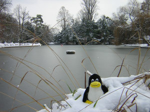 Tux and the frozen lac par Francois Schnell (CC-by - https://www.flickr.com/photos/frenchy/79368117)