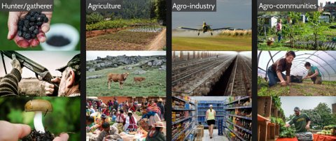 ages-agriculture_opt